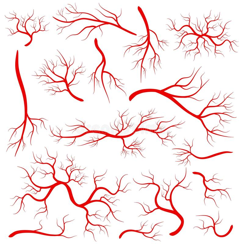 Creative illustration of red veins isolated on background. Human vessel, health arteries, Art design. Abstract concept grap. Hic element capillaries. Blood stock illustration