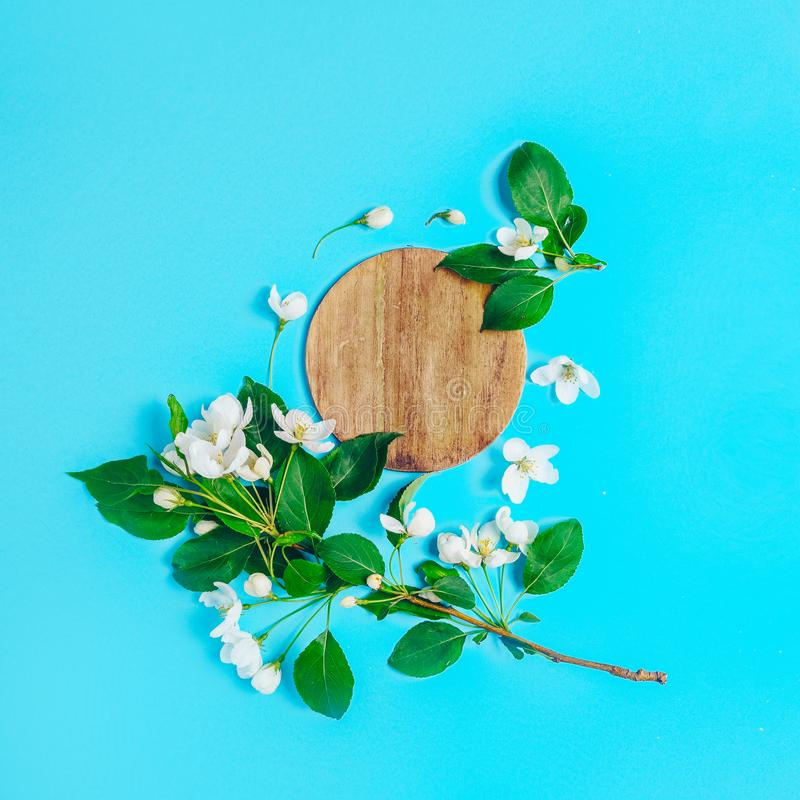 Creative layout with blooming apple tree on a blue background. Flat lay. Concept - spring minimalism.  royalty free stock images