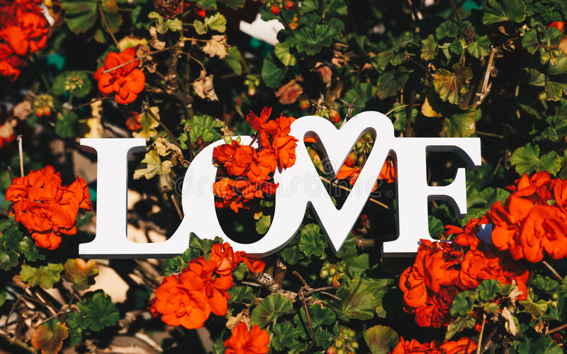 Creative layout with colorful flowers, leaves and Word LOVE. Love concept. stock photos