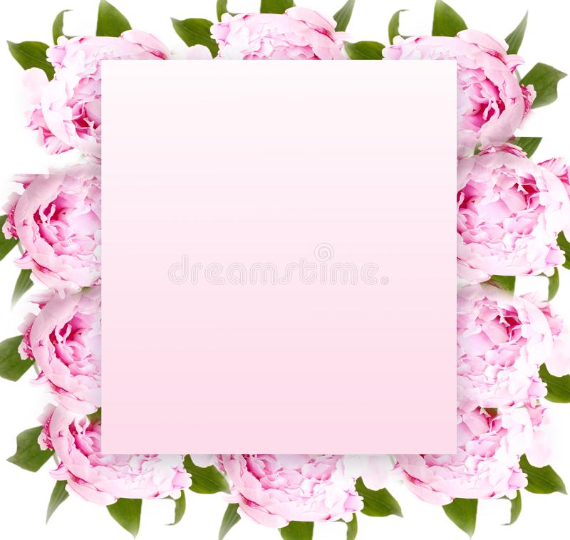 Creative layout with floral ornament. royalty free stock photos