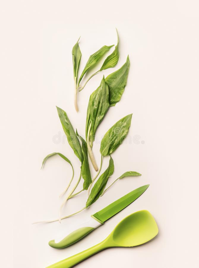 Creative layout with fresh green wild garlic leaves , knife and cooking spoon on white background royalty free stock photos