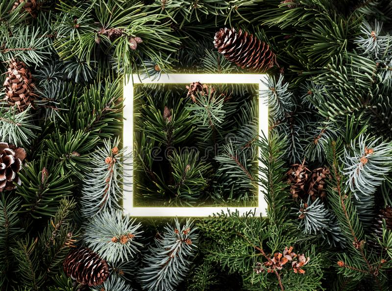 Creative layout made of Christmas tree branches with pine cones and glowing neon frame. Xmas and New Year theme. Flat lay, royalty free stock image