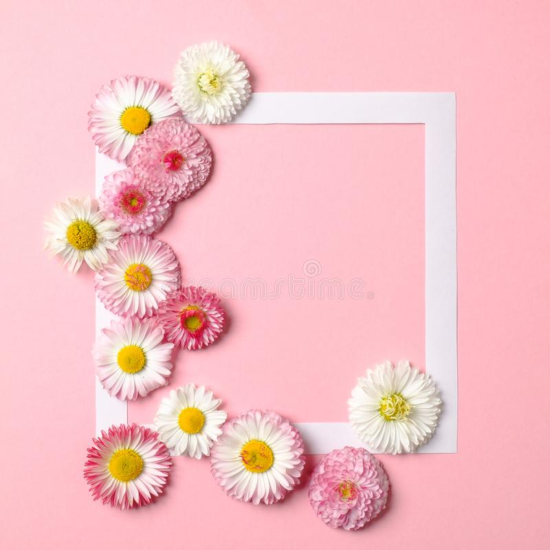 Creative layout made of colorful spring flowers and paper border frame on pastel pink background. Minimal holiday concept. Flat. Lay pattern. Top view, overhead stock images