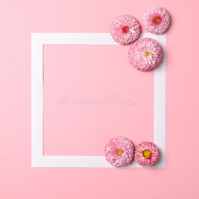 Creative layout made of colorful spring flowers and paper frame border. Minimal holiday concept. Flat lay pattern.  royalty free stock images