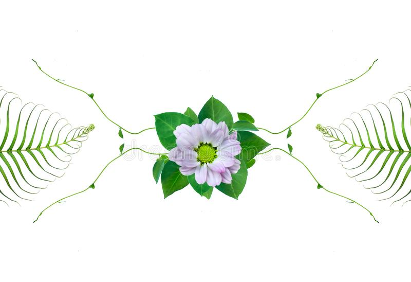 Creative layout made of flowers and fern leaves with paper card note. Flat lay. Nature concept. Creative layout made of flowers and leaves with paper card note stock illustration