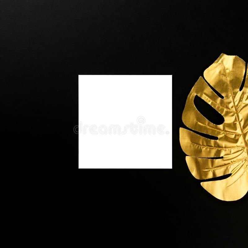Creative layout made of one golden tropical monstera leaf on black background. Minimal luxury exotic concept with white paper card stock photos