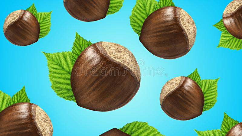 Creative layout made pattern hazelnut in shell with leaf isolated blue background. Mockup hazelnuts as package design element royalty free stock images