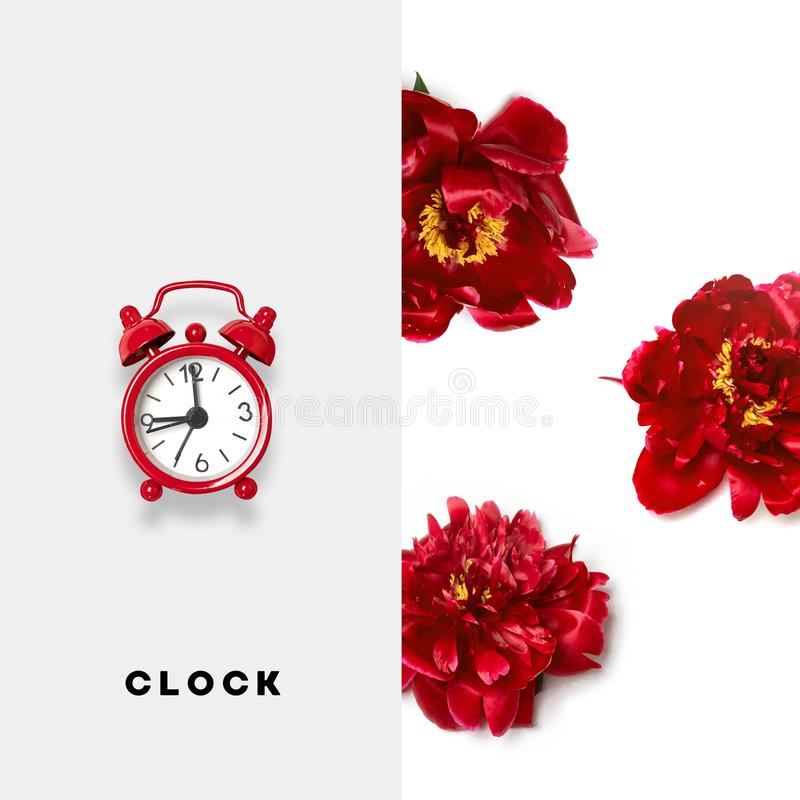 Creative layout made of red alarm clock and red flowers of peonies on a white background stock photography