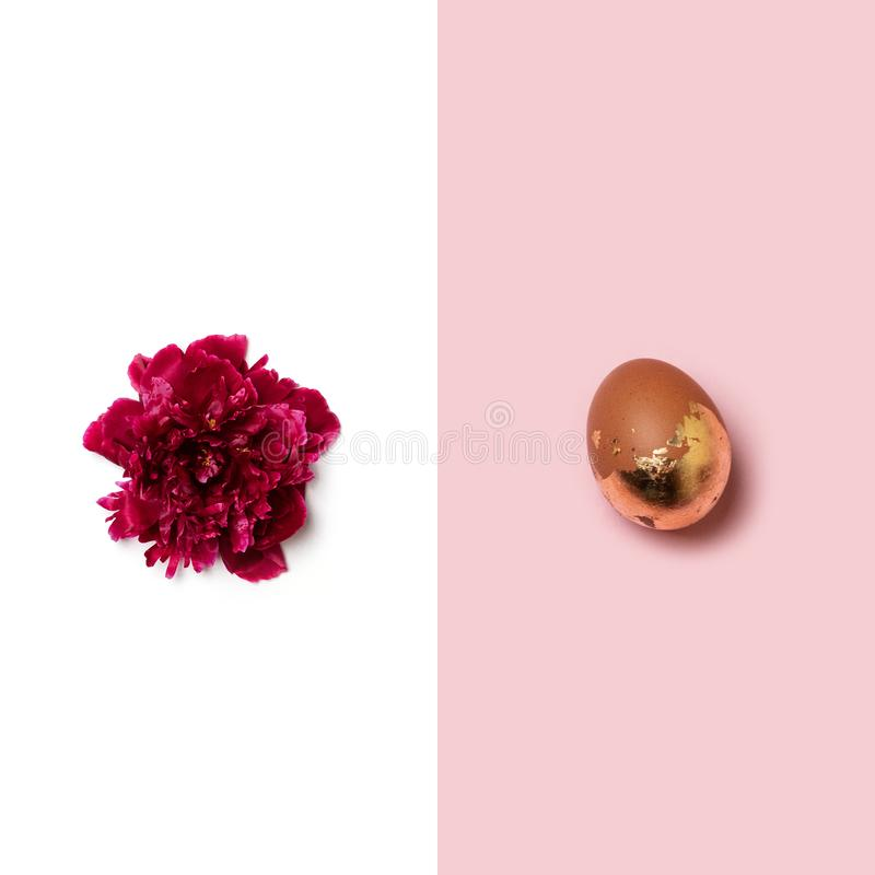 Creative layout made of stylish easter gold egg and red peony on different backgrounds. Creative picture of stylish easter gold egg and red peony on different stock illustration
