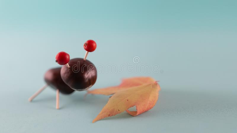 Creative natural children toys handmade from chestnuts and acorns on marine blue background. Concept of Chestnuts animal figurines stock photography