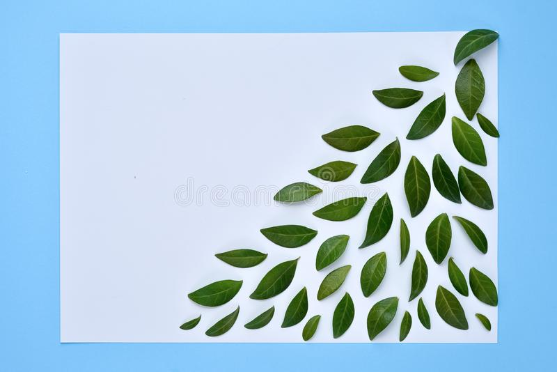 Creative Natural Composition Of Green leaf And Blank Paper On blue Paper Background With Copy Space. Flat Lay, top view. Minimal summer concept stock illustration