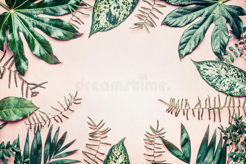 Creative nature frame made of tropical palm and fern leaves on pastel background royalty free stock photo
