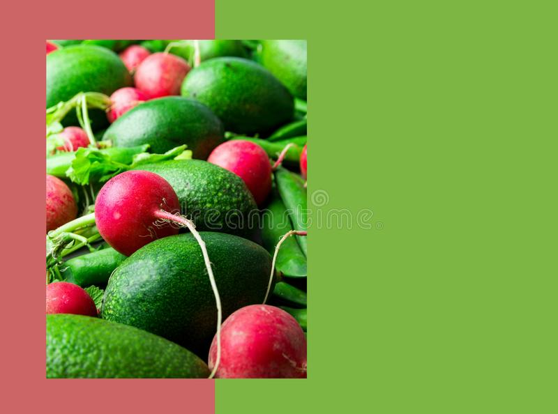 Creative organic food healthy vegan lifestyle poster banner template. Raw organic vegetables radish avocados peas on duotone. Cherry pink chartreuse green stock image