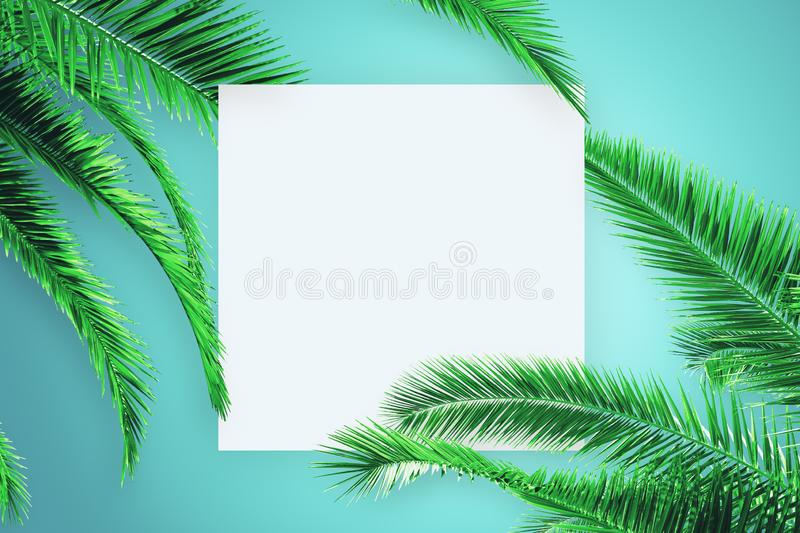 Creative palm poster. Creative blue wallpaper with palm trees and empty white square poster. Post card, organic and nature concept royalty free stock images