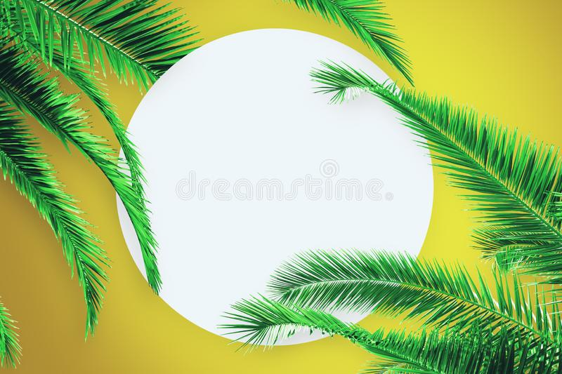 Creative palm poster. Creative yellow background with palm trees and empty white round poster. Post card, organic and nature concept royalty free stock images