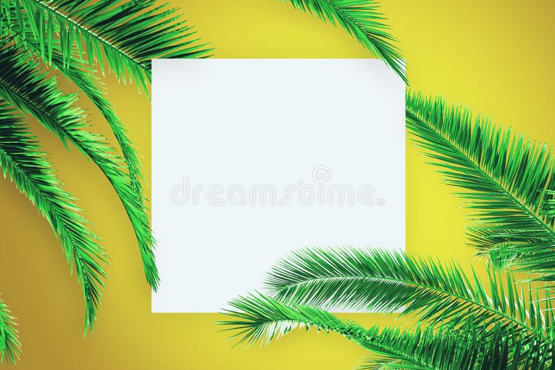 Creative palm poster. Creative yellow background with palm trees and empty white square poster. Post card, organic and nature concept royalty free stock photo