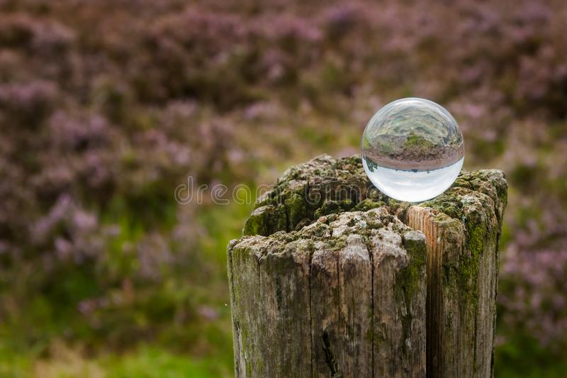 Crystal ball with the reflection of a heathland. Creative photo shot with a glass ball reflecting the landscape. A Moorland on the Veluwe in Holland with purple stock photos