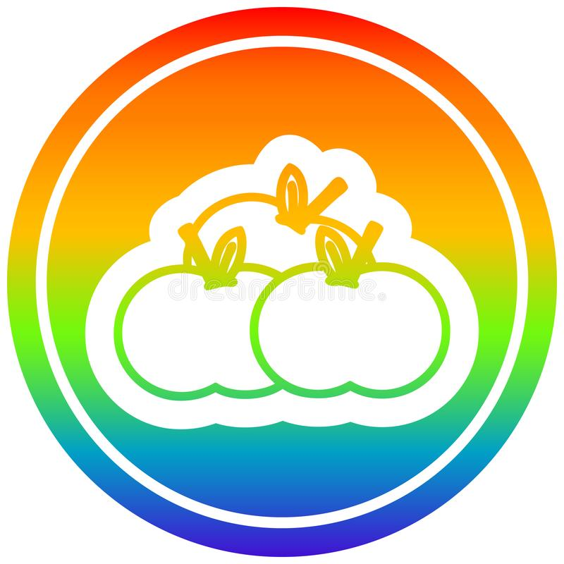 A creative pile of apples circular in rainbow spectrum. An original creative pile of apples circular in rainbow spectrum stock illustration
