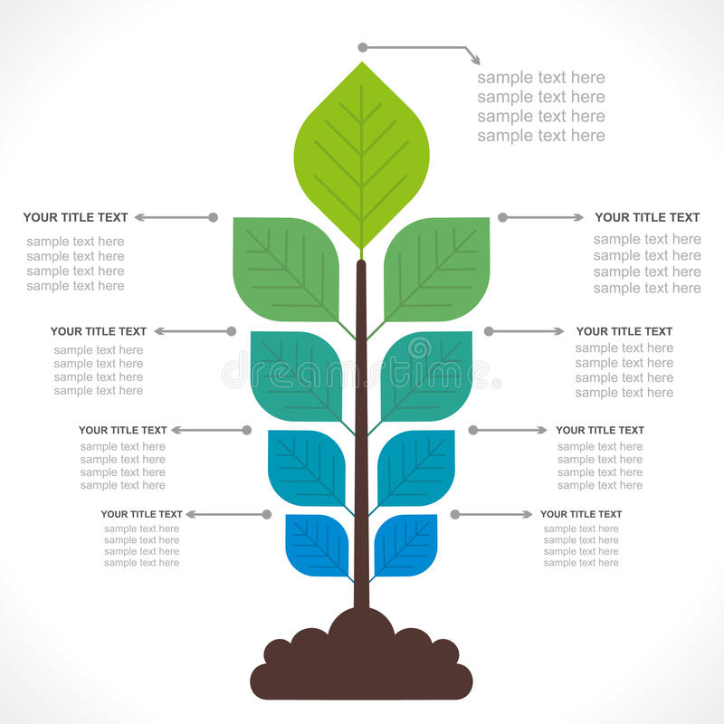Creative plant info-graphic. Creative small plant business info-graphics design vector royalty free illustration