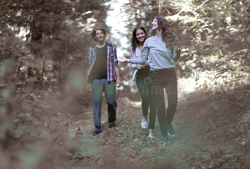 Creative team, while Hiking in the woods royalty free stock images