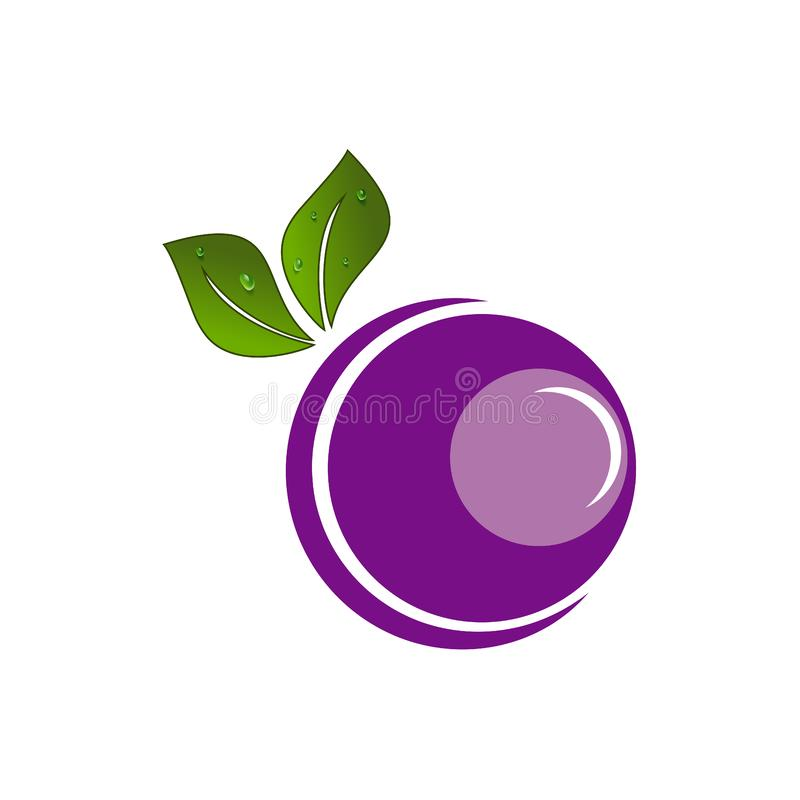 Creative vector fruit logo design grapes shape royalty free illustration