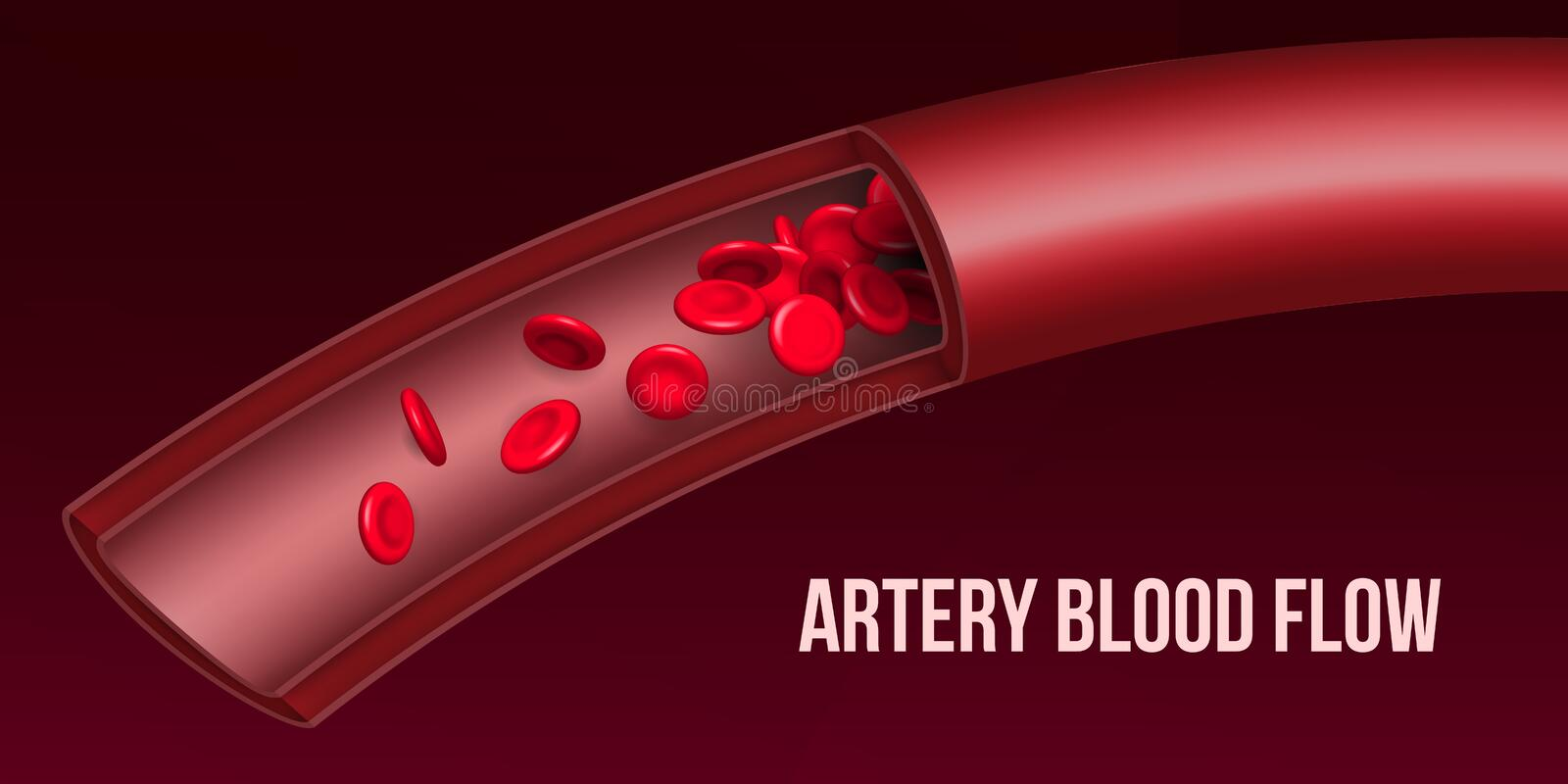 Creative vector illustration of artery red blood cells stream flow, microbiological medical erythrocyte vessel. On background. Art design medicine. Abstract stock illustration