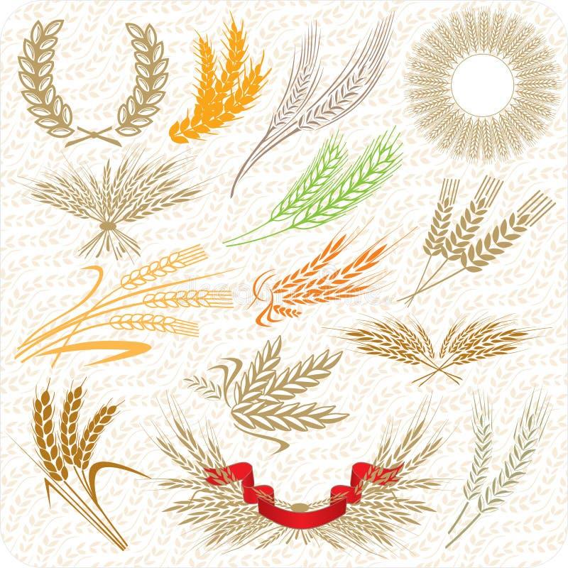 Free Creative Wheat Ears Stock Photo - 14649040