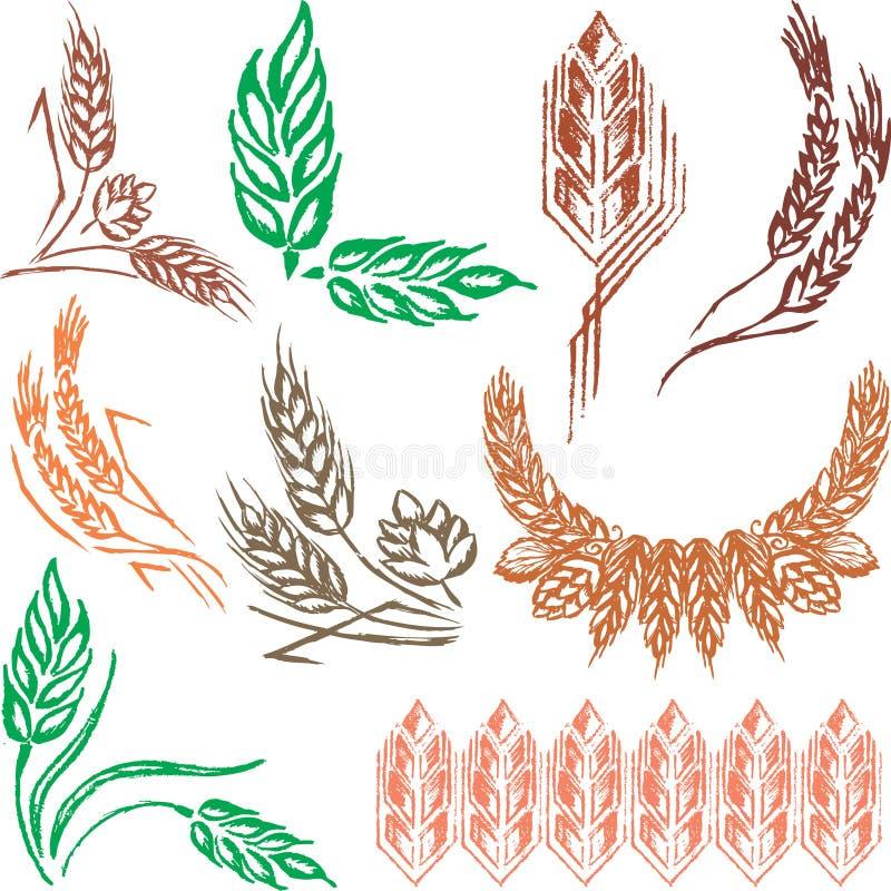 Free Creative Wheat Ears, Sheafs & Hop Cones Royalty Free Stock Image - 14941406