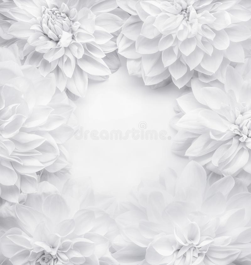 Creative white flowers frame background , floral pattern or layout for greeting card of Mothers day,birthday. Valentine`s Day, wedding or happy event, top view stock images