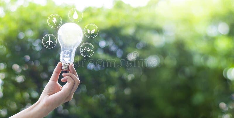 Creatività di protezione dell'ambiente sulla giornata per la Terra o sul concetto di energia di risparmio e dell'ambiente fotografia stock