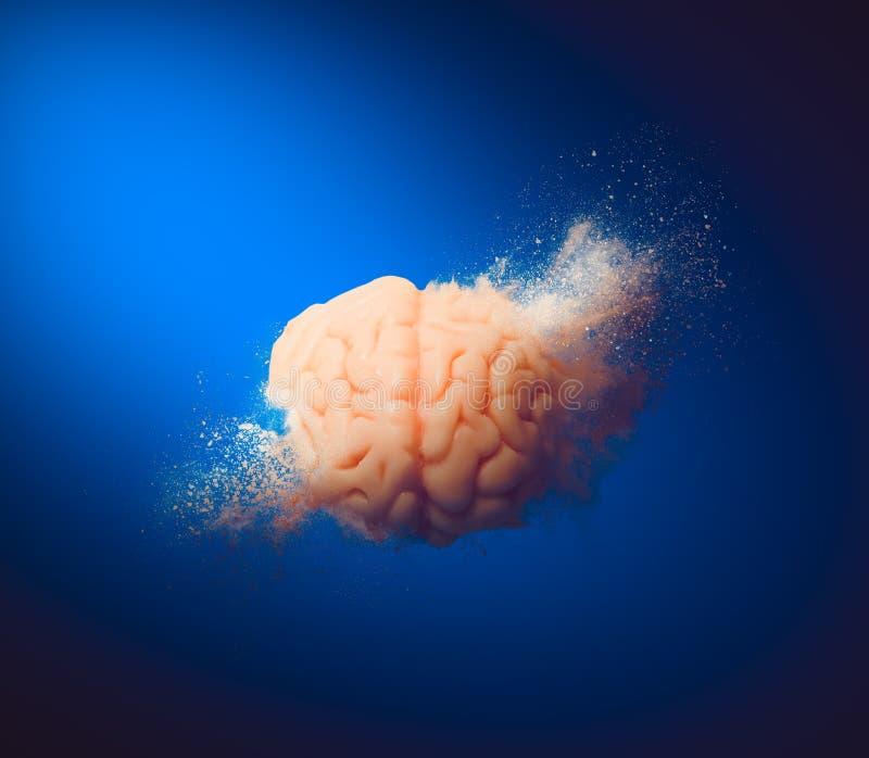 Exploding brain, creativity concept stock photos