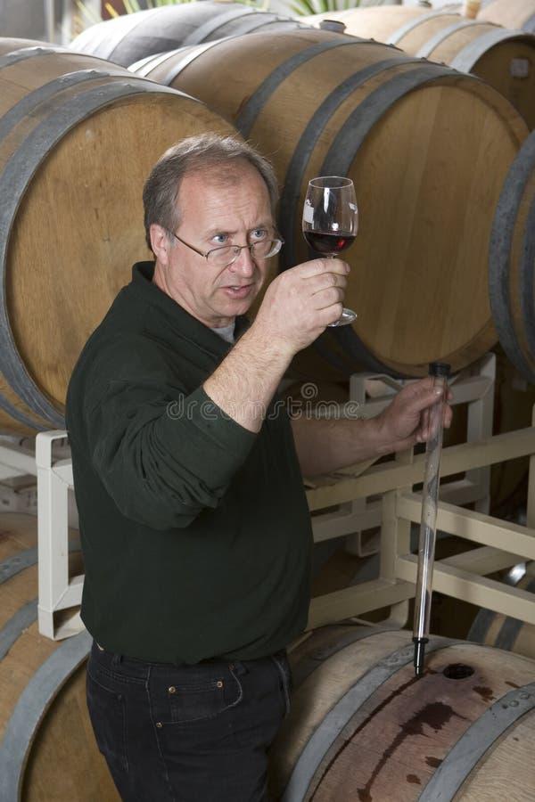 Creatore di vino immagine stock