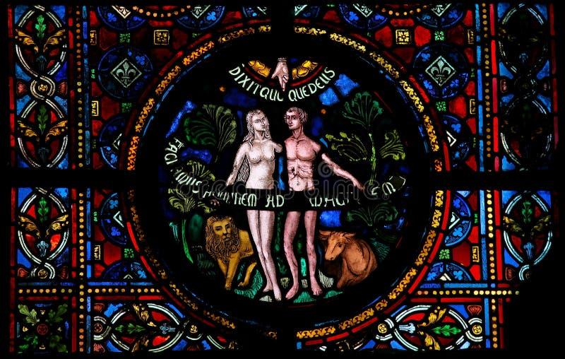 Creazione di Adam e di Eve immagine stock