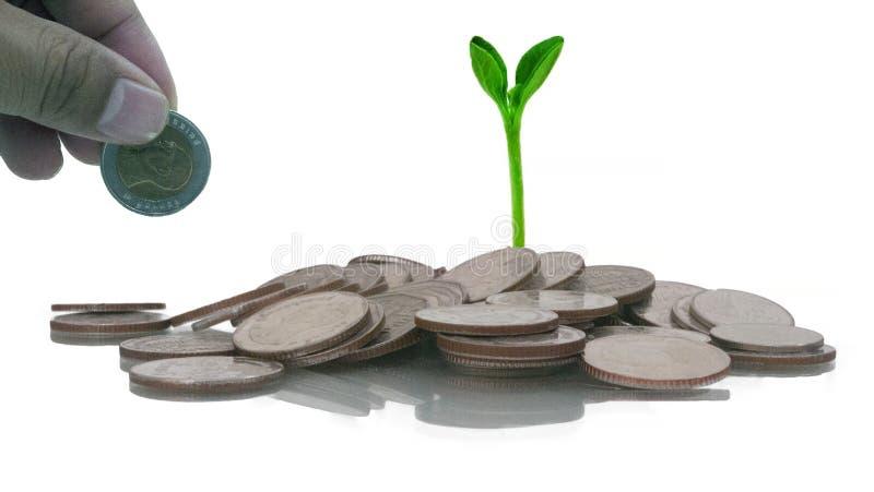 Crecer el negocio para la inversión y ahorro imagenes de archivo
