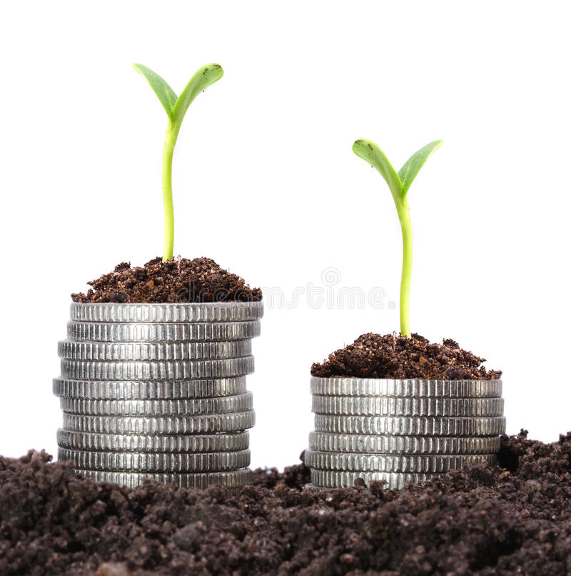 Crecimiento de dinero. foto de archivo