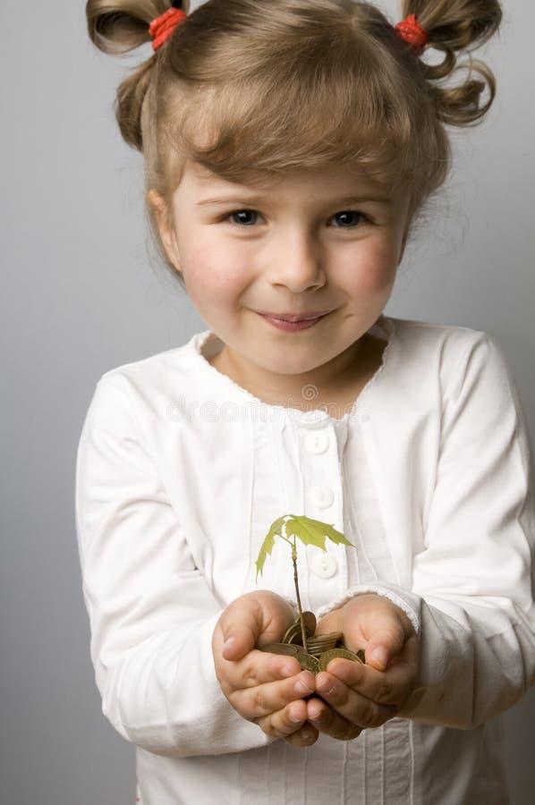 Crecimiento de la planta de semillero de monedas fotografía de archivo libre de regalías