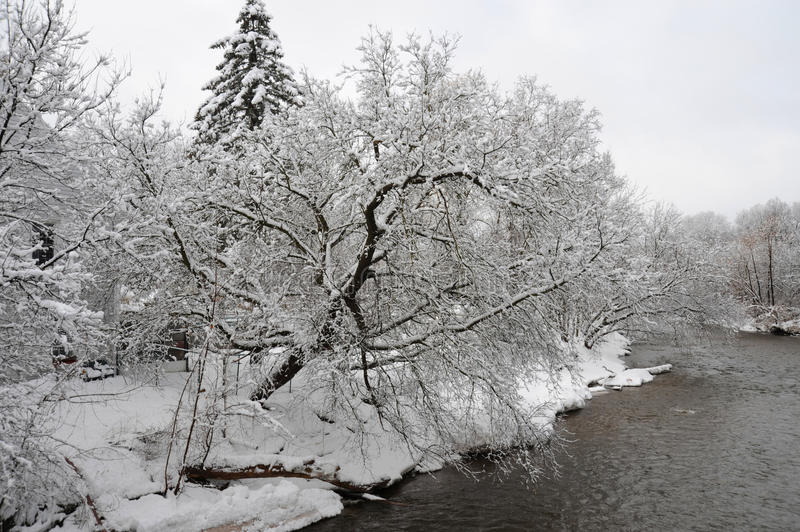 Credit River in the cold winter morning royalty free stock photography