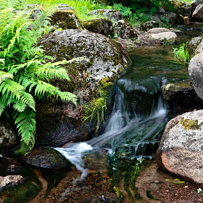 Download Creek Stock Photography - Image: 26520592