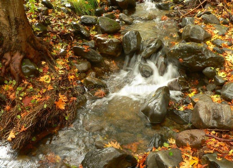 Download Creek stock image. Image of nature, fall, rocks, autumn - 3426083