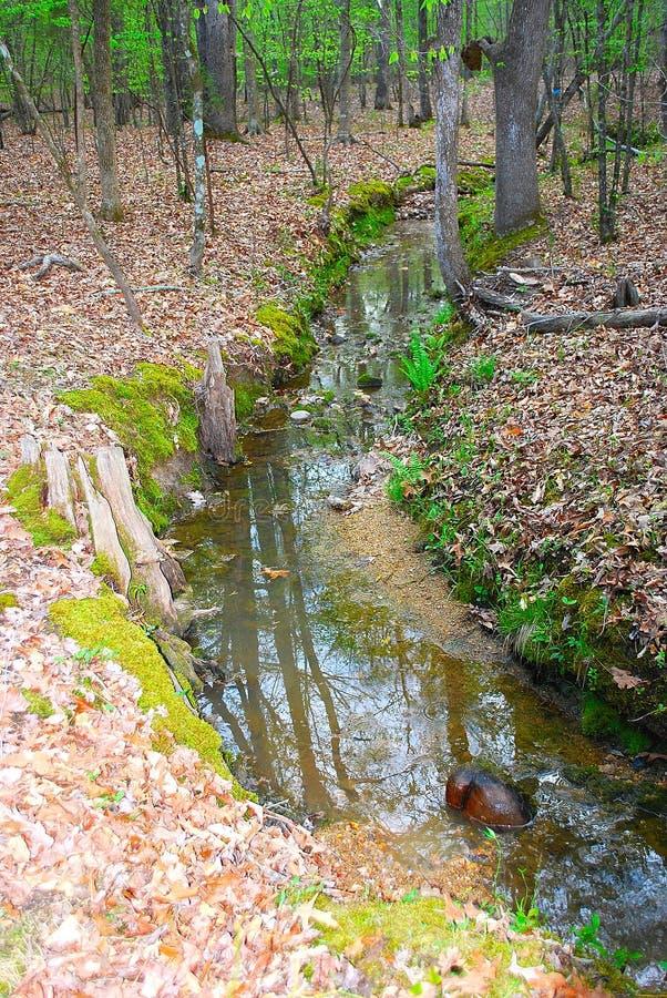 creek arkivbilder