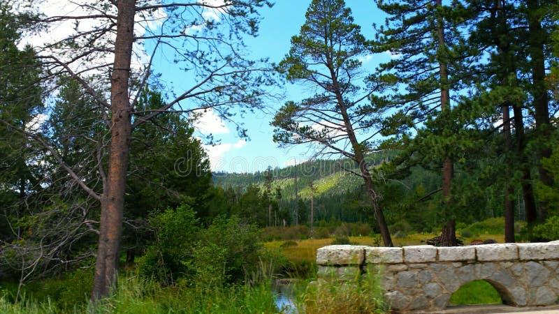 The Creek fotos de archivo
