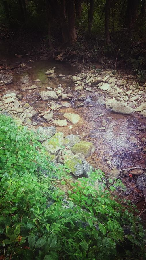 The Creek immagine stock libera da diritti