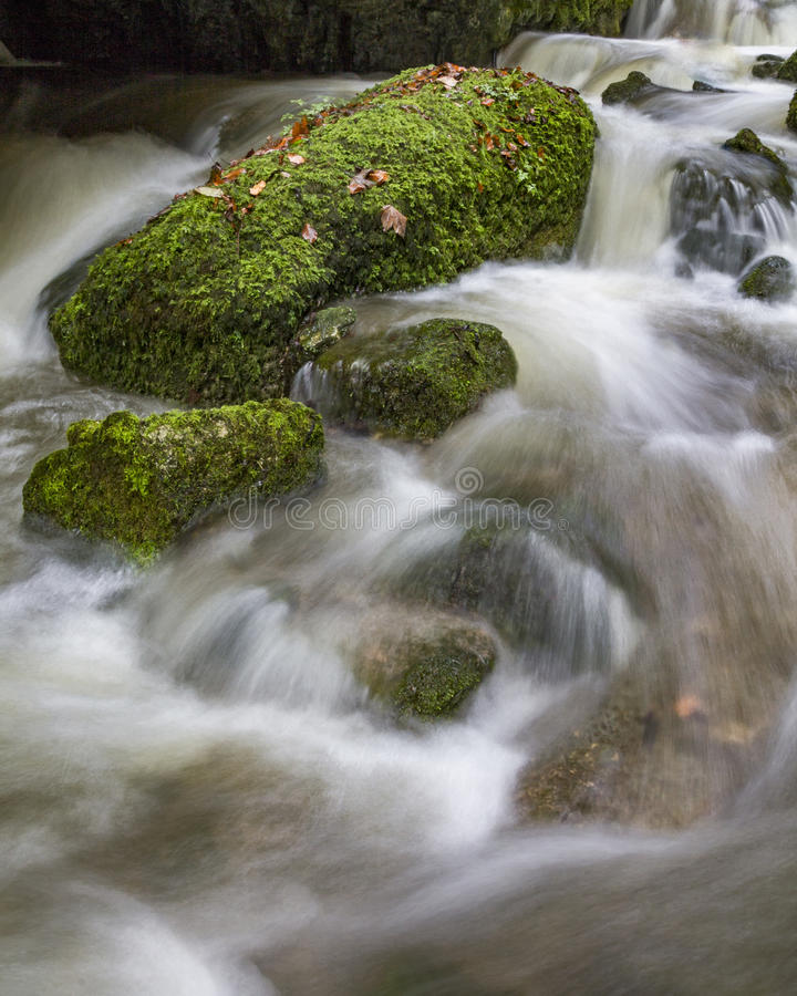 The Creek 免版税图库摄影