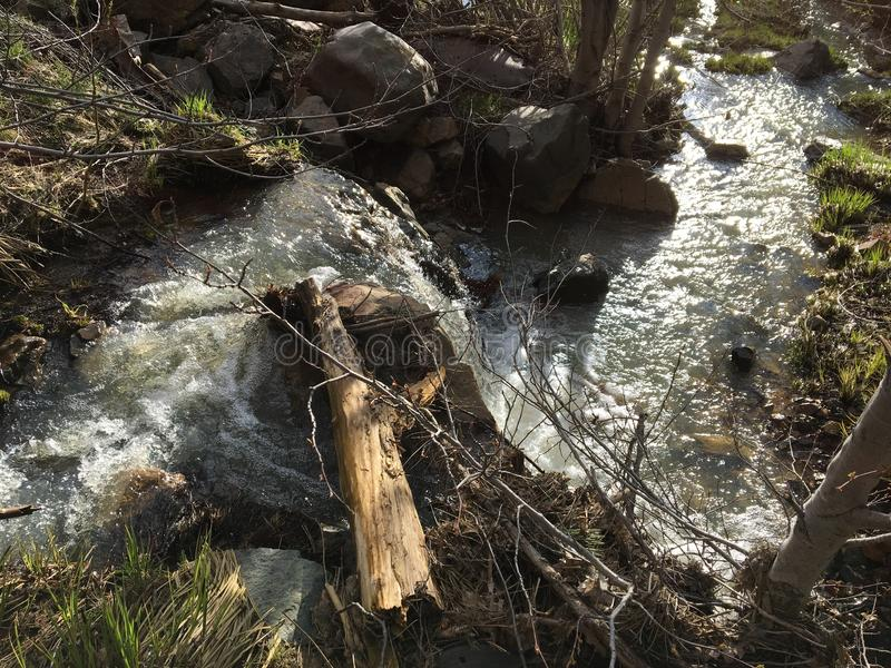 creek fotografia de stock royalty free