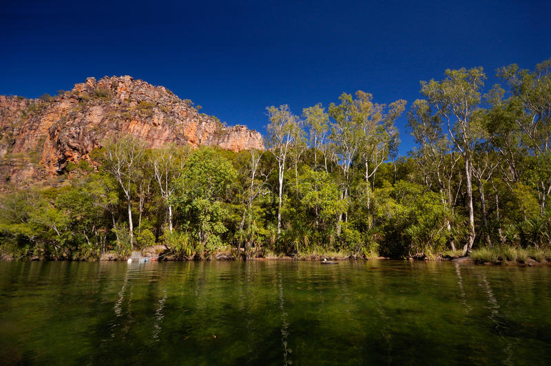 Creek in Australia stock photos