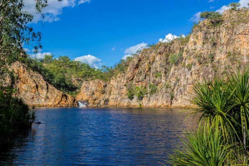 The Creek che porta la chiara acqua di Edith Falls Lelyin con la parete della roccia che riflette nell'acqua, parco nazionale di  immagine stock libera da diritti