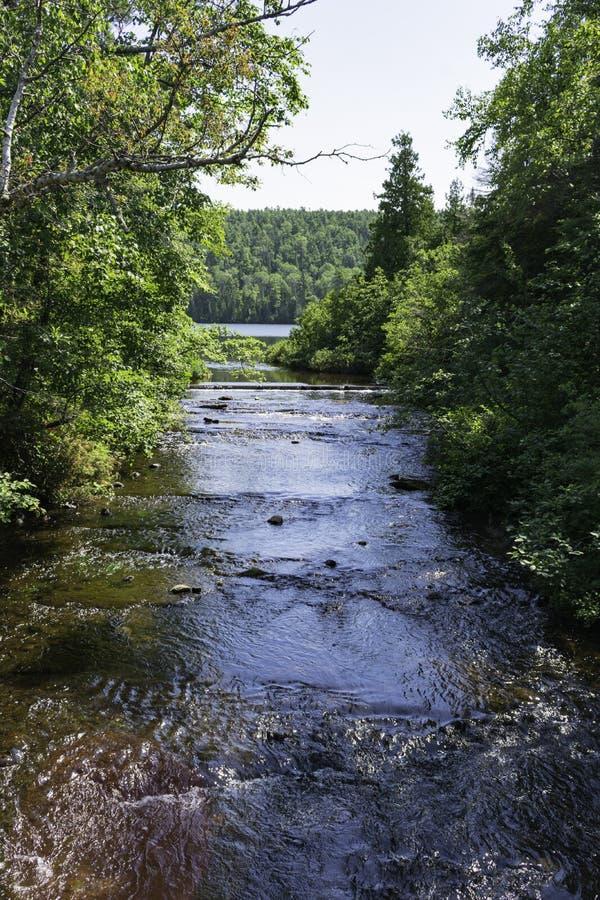 Creek to Fanny Hooe royalty free stock photo