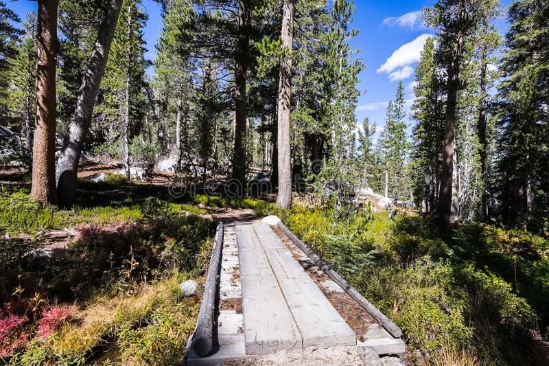 Creek crossing in the John Muir wilderness royalty free stock images