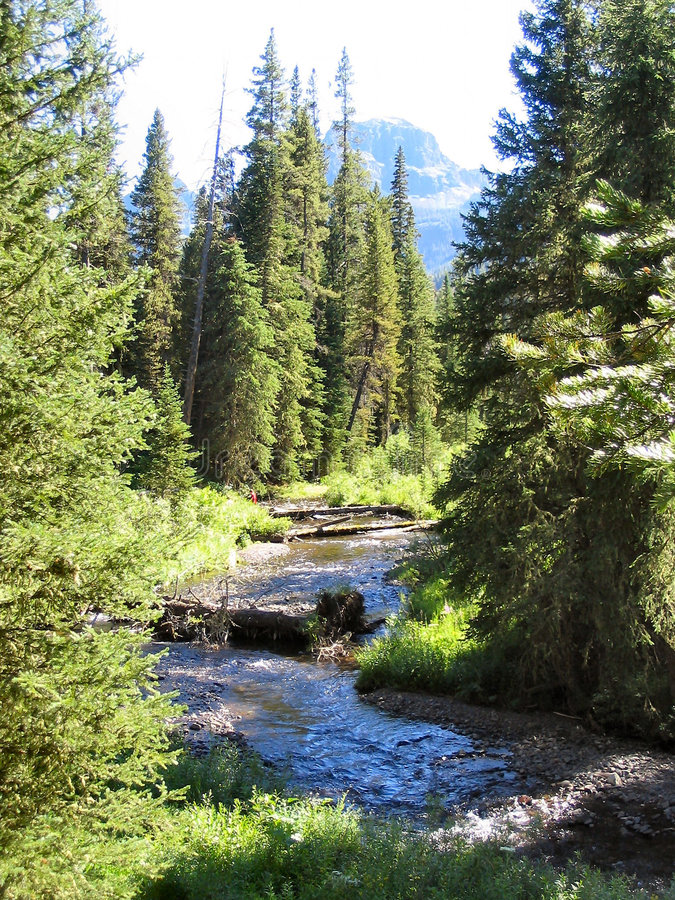 Creek And Elephant Mountain Royalty Free Stock Photography