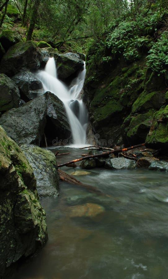Download Creek Falls stock image. Image of river, waterway, nature - 12795309